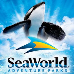 Texas Summer Giveaway BASH – Sea World San Antonio!