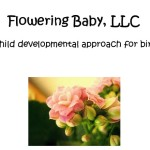 Flowering Baby Curriculum Review