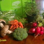 Paleo Challenge Begins TODAY! – Day 1