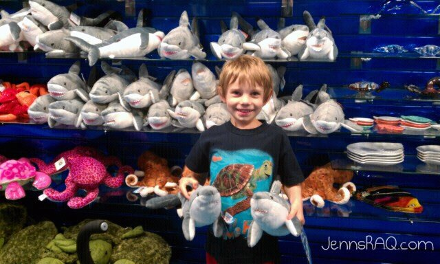sea life aquarium gift shop