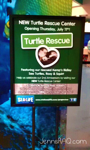 SEA LIFE Aquarium Turtle Rescue Center