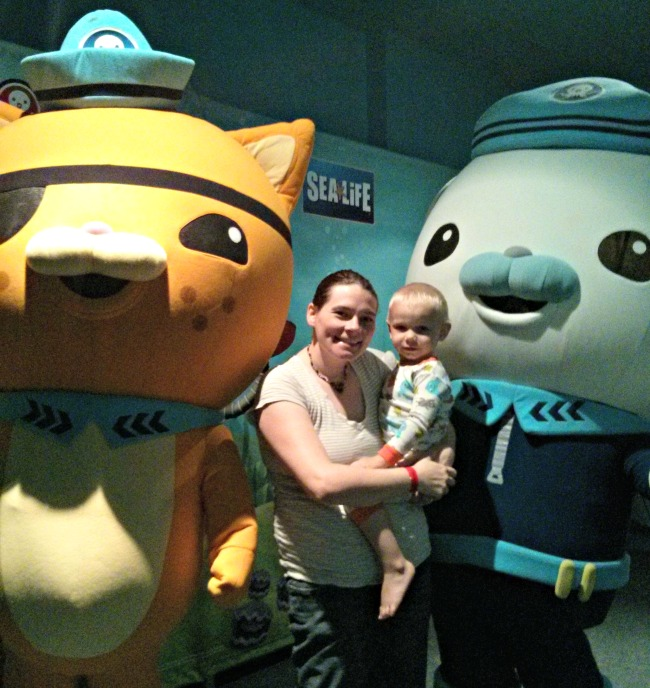 Sea Life Aquarium Grapevine Octonauts