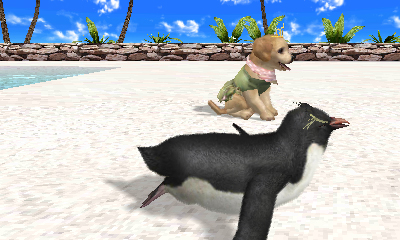 Petz Beach Playing with a Penguin