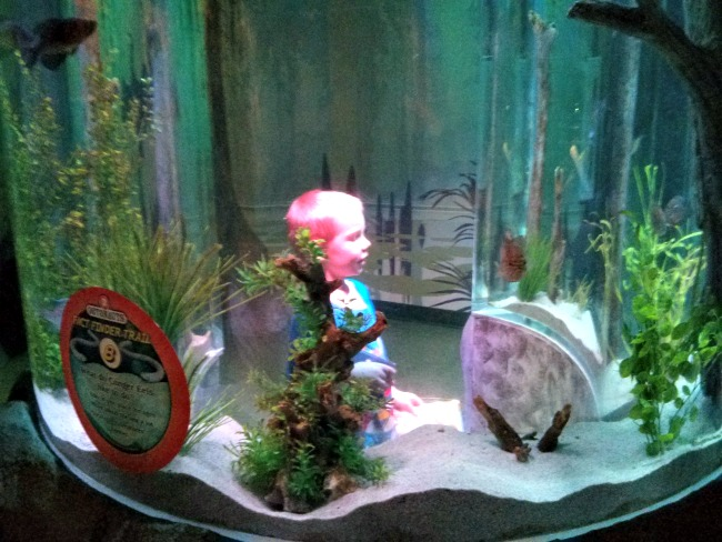 OCTONAUTS at SEA LIFE Grapevine Fact Finder Trail
