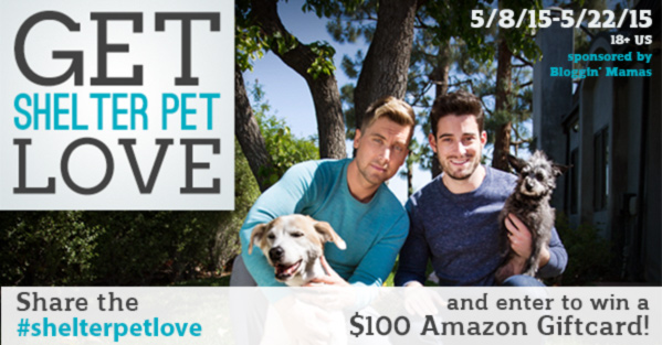 The Shelter Pet Project (and a $100 Amazon GC giveaway!) #shelterpetlove