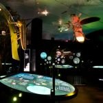 Perot Museum Creatures of Light Exhibit