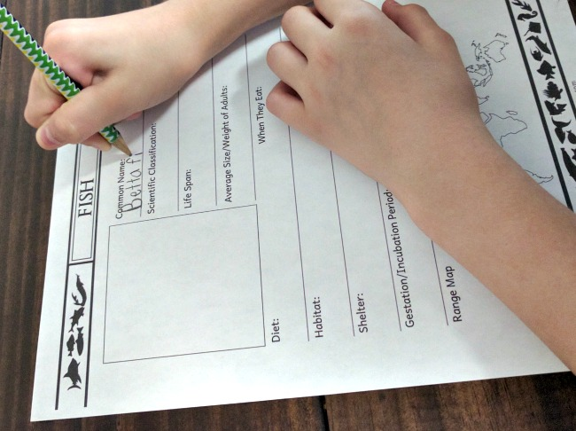 NotebookingPages.com provides easy to use worksheet forms for students to complete