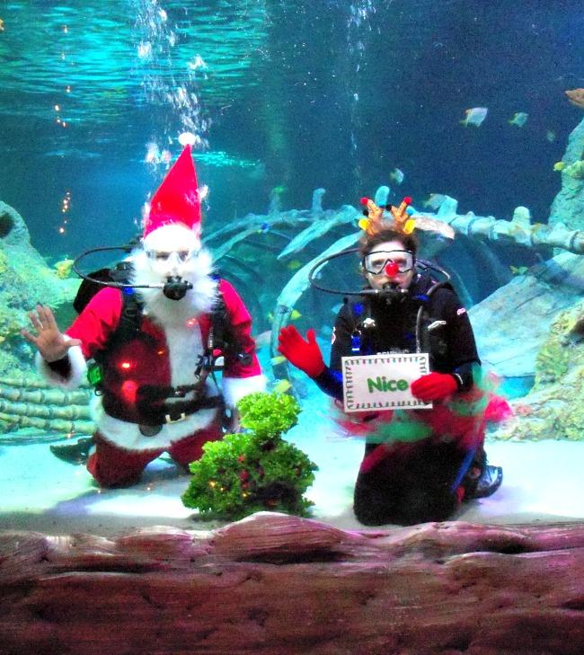 Scuba Diving Santa at SEA Life Grapevine Texas