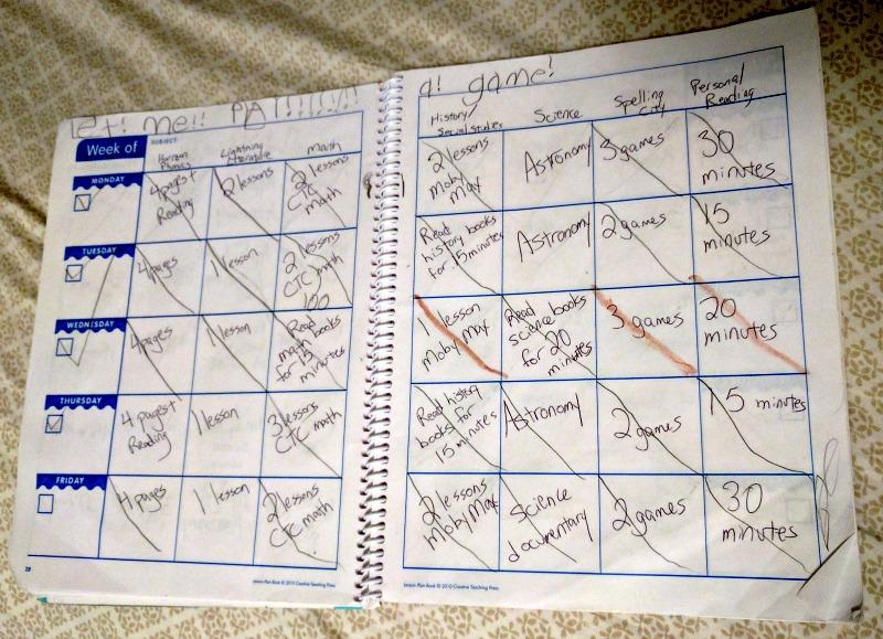 First Grade Homeschool Curriculum - Year in Review