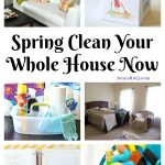 Spring Clean Your Whole House Now