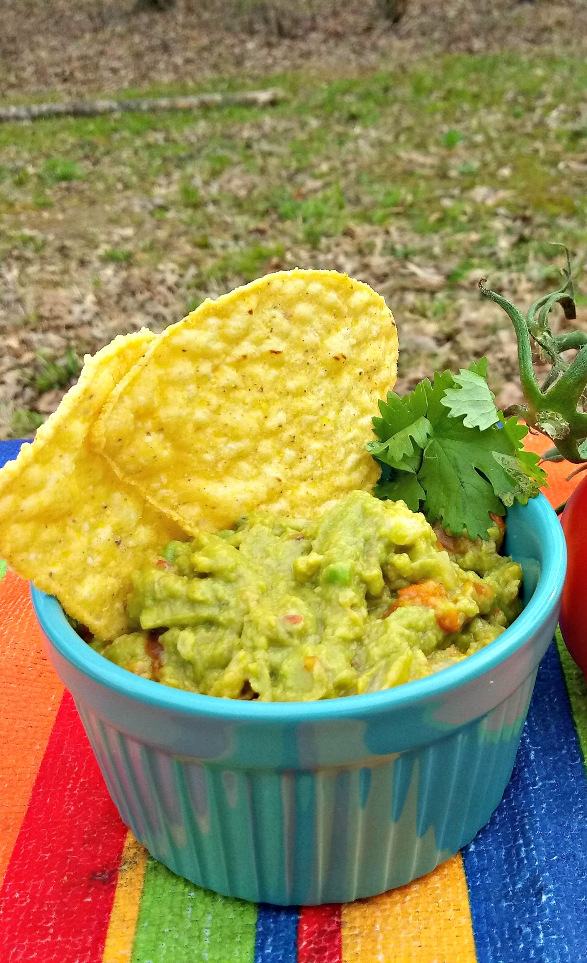 Grilled Veggie Guacamole Recipe for a tasty twist on an old favorite