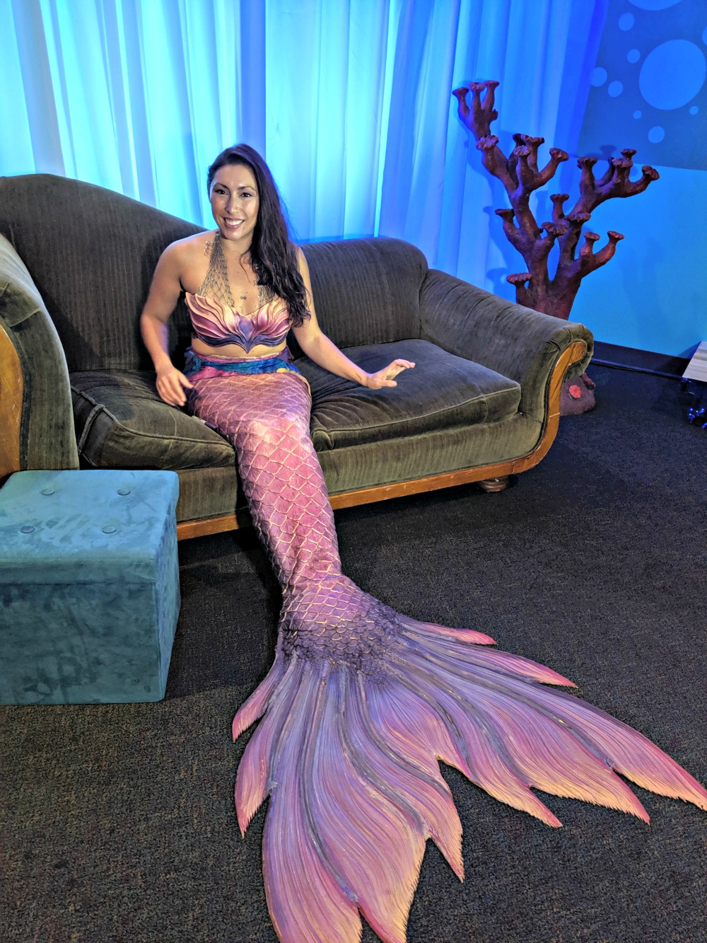 SEA LIFE GRAPEVINE Mermaid Experience Photo Opportunity