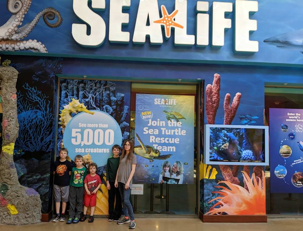 SEALIFE Aquarium Grapevine TX