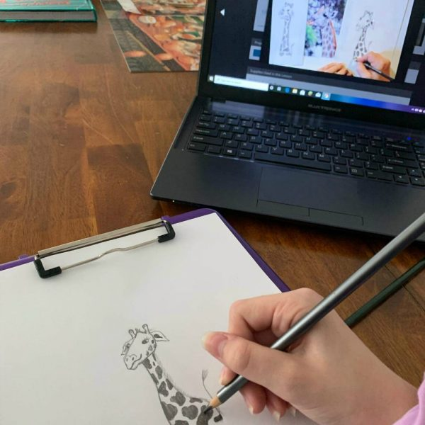 Creating a Masterpiece Drawing Program Review