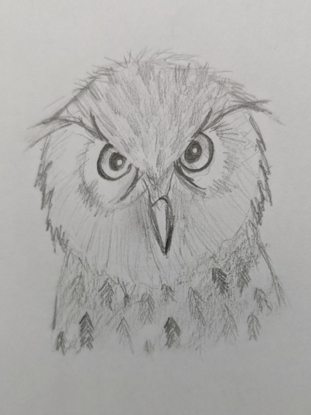 Creating a Masterpiece Drawing Program - Hoot Owl Final
